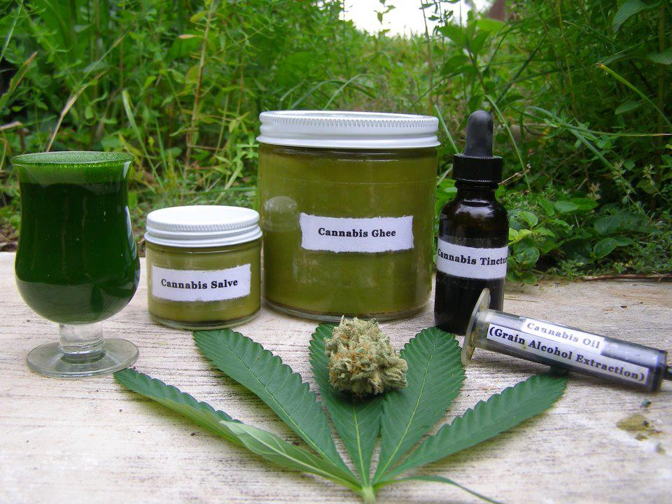 Kit complet culture cannabis for Chambre de culture kit complet cannabis