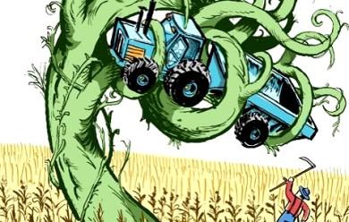 Les « super mauvaises herbes », conséquence de la culture OGM ?