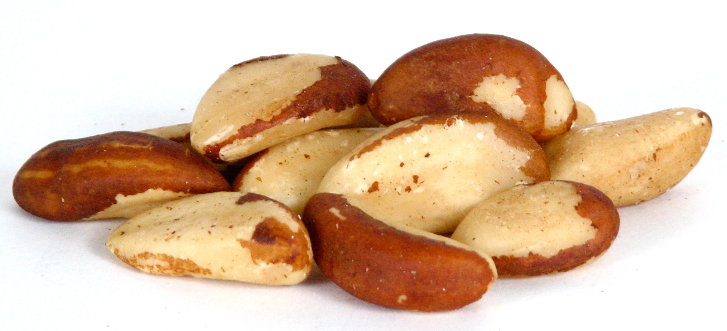 Closeup-Brazil-Nuts