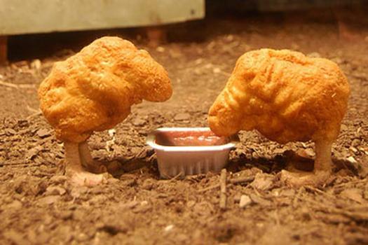 poulet-nourri-ogm-passe-mcdonalds-fia