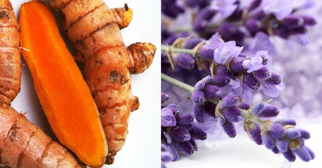 15 anti-inflammatoires naturels - Santé Nutrition