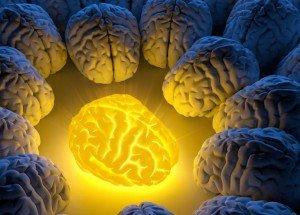 curcuma et cerveau