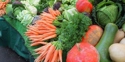Des légumes provenant de l'agriculture biologique.