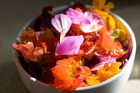fleurs-comestibles2