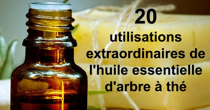 20 utilisations extraordinaires de l 39 huile essentielle d - L huile essentielle d arbre a the ...
