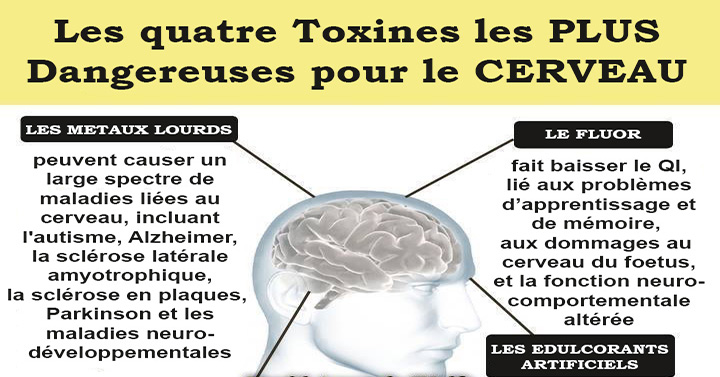 toxines-cerveau2