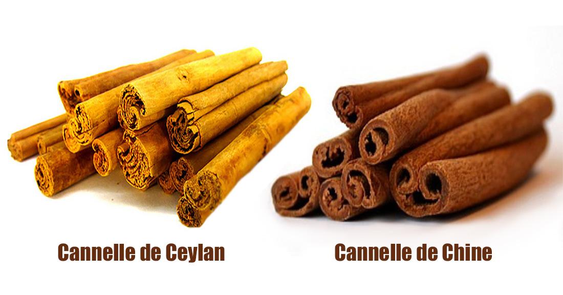 cannelle-chine-ceylan