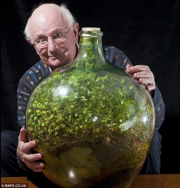 jardin-bouteille