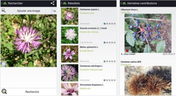 application-plantnet