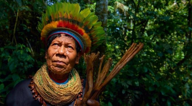 Shaman-Ecuador-2-1024x576-672x372