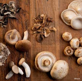 edible-mushrooms