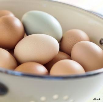 organic-egg-benefits