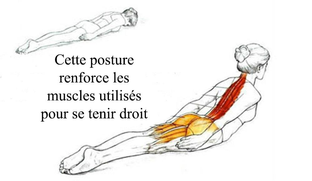 posture-pose