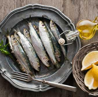 sardines-nutrition