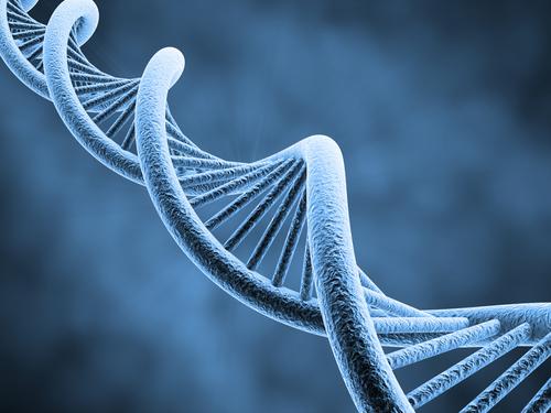gènes-1