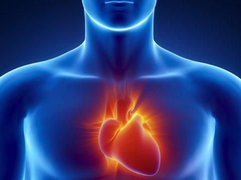 heart-health1