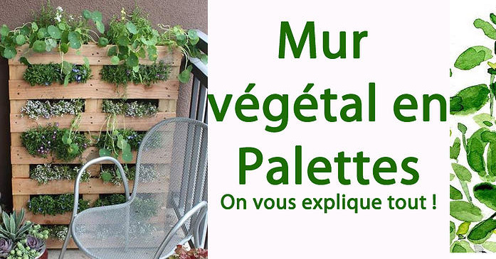 Mur Vegetal En Bois De Palette : mur-vegetal
