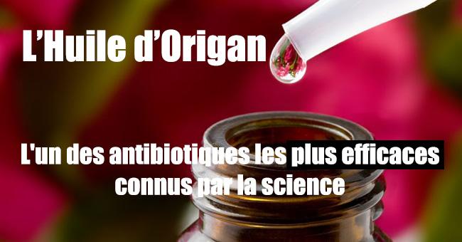 huile-origan