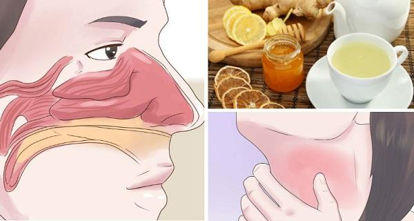 boissons-sinus