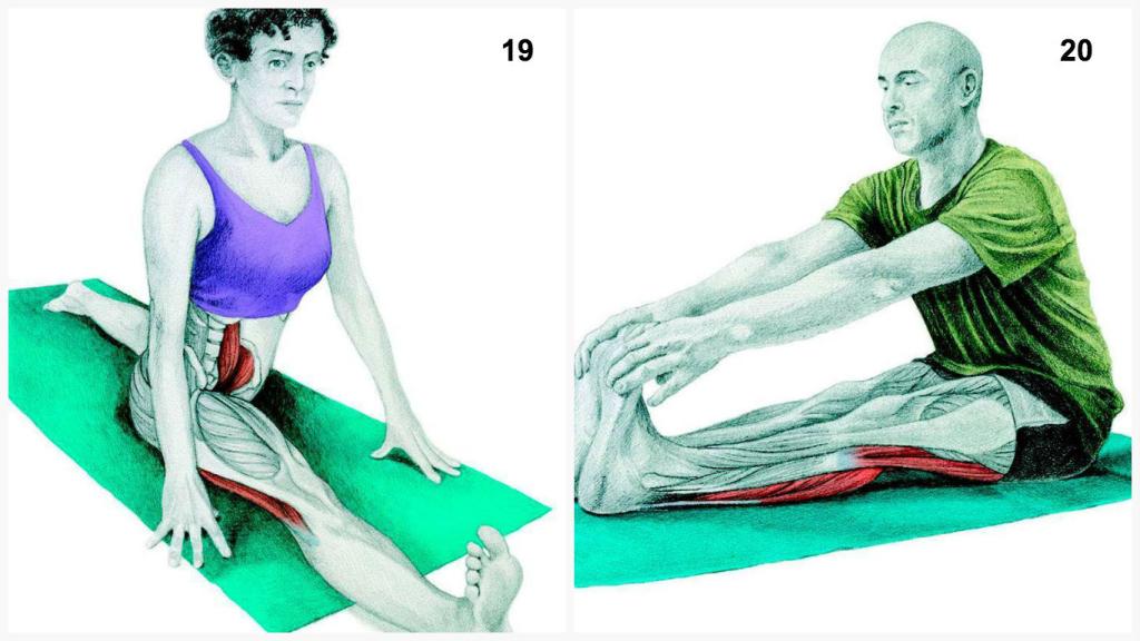 Yoga19_20-1024x576