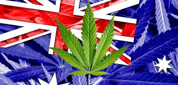 cannabis-australie
