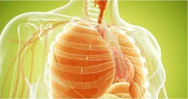nettoyer-vos-poumons