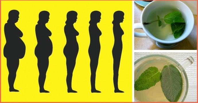 stimuler appétit et prise de poids