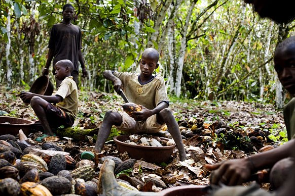 cacao-exploitation-enfant-afrique