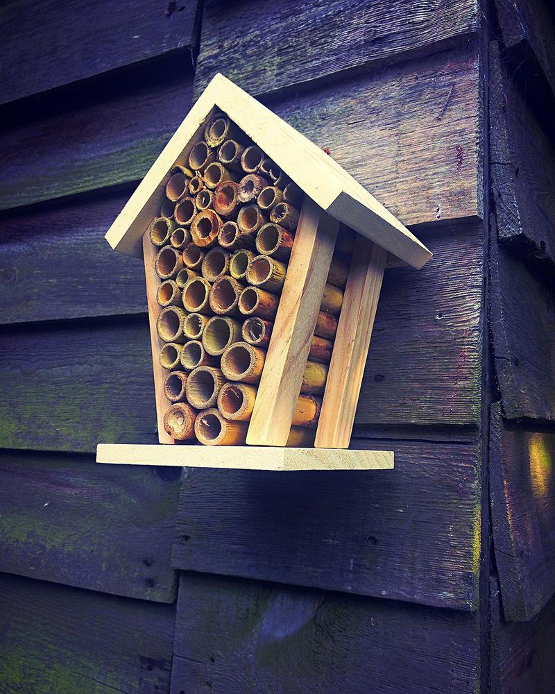 hotel-a-abeille4