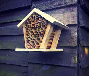 construisez des h tels abeilles pour aider sauver les abeilles sant nutrition. Black Bedroom Furniture Sets. Home Design Ideas