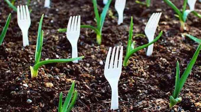 23 astuces ing nieuses pour vous simplifier le jardinage for Jardin et jardinage