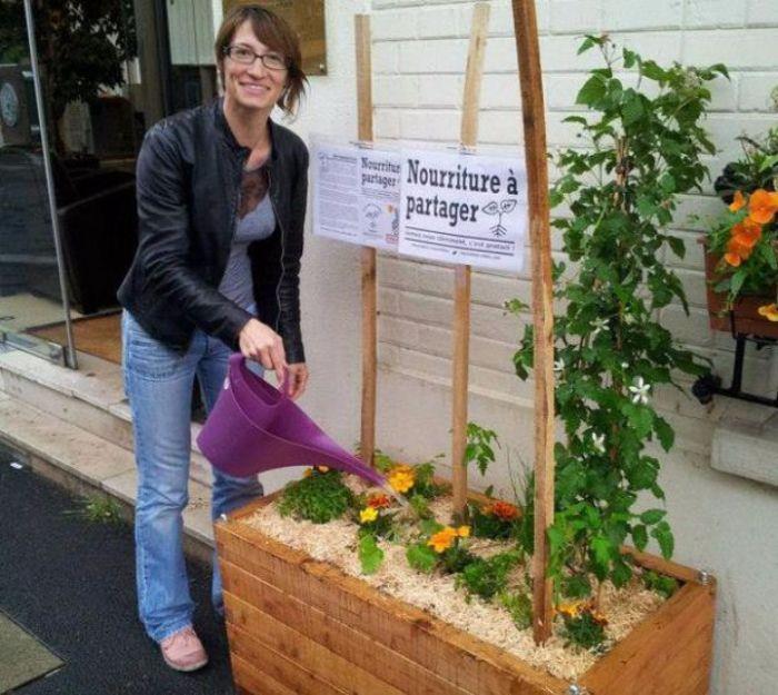incroyables-comestibles-potagers-urbains-legumes-gratuits-1-1