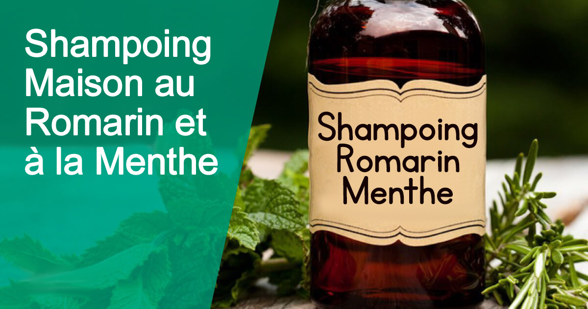 shampoing-maison-romarin-menthe2