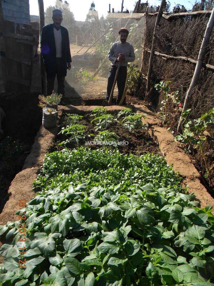 brachoua-permaculture-maroc-developpement-durable-3