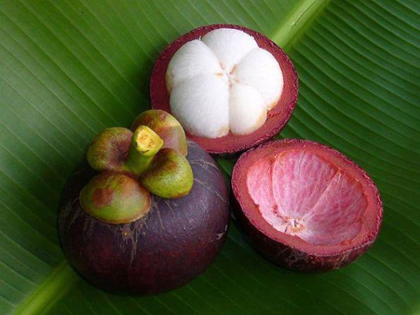 Mangoustan (ou mangouste, ou fruit des dieux)