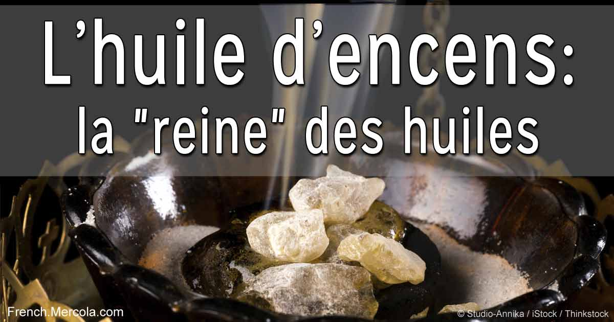 frankincense-oil-king-of-oils-french-fb