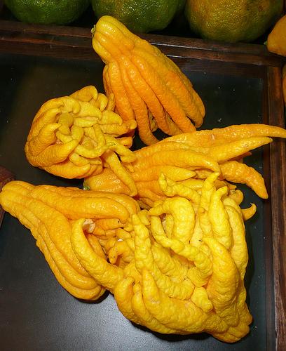 les mains de buddha
