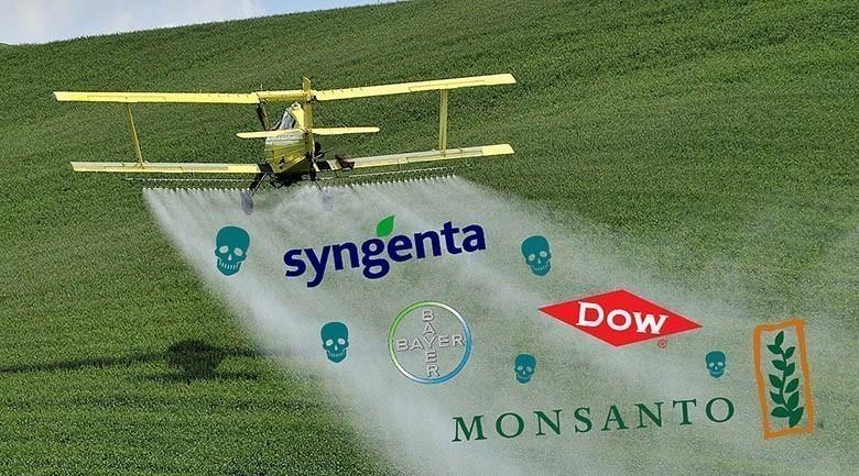 cash_pesticide