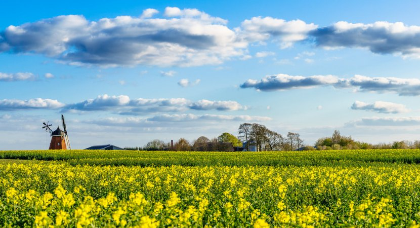 denmark-raises-money-to-become-organic-in-2015