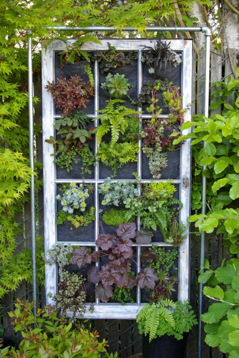1430165705-window-vertical-garden