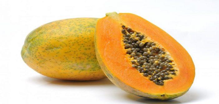 papaya-702x336