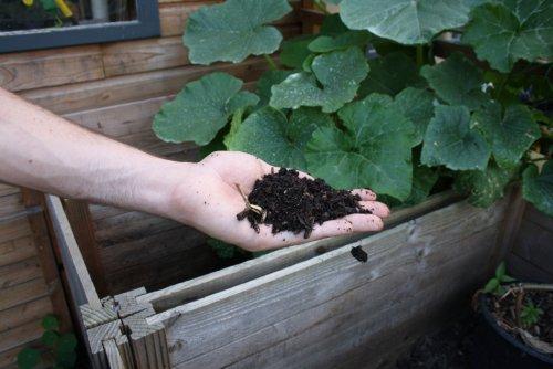 compost-72417