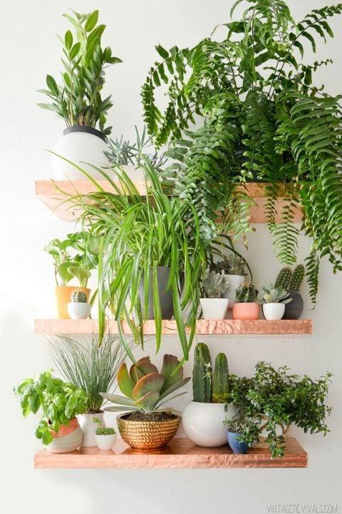 gallery-1430166056-copper-shelves-garden