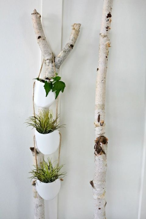 gallery-1430167582-hanging-plant-holder