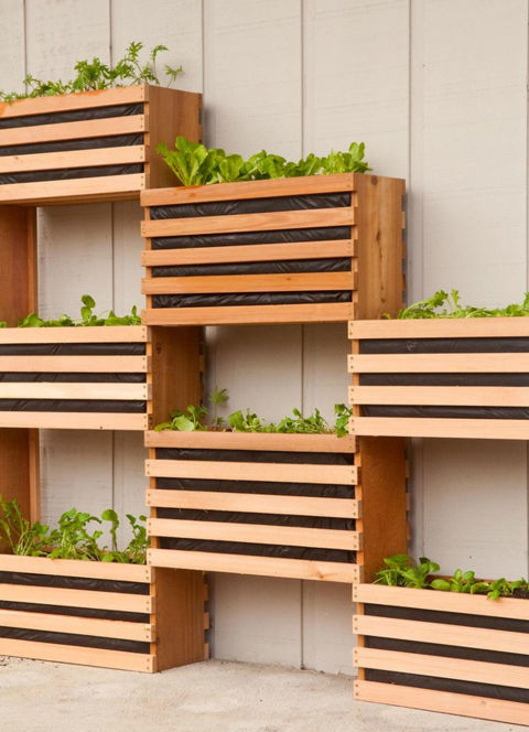 how-to-make-a-vertical-garden-feature-1_large