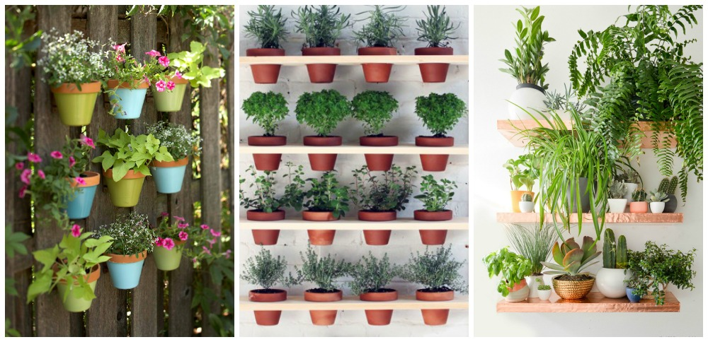 23 façons créatives de planter un jardin vertical - Santé Nutrition