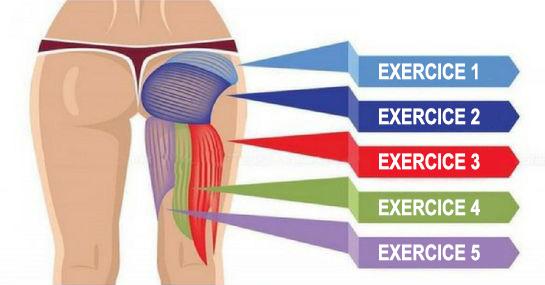 Beliebt 5 Exercices efficaces qui vont développer vos fessiers, améliorer  HL06