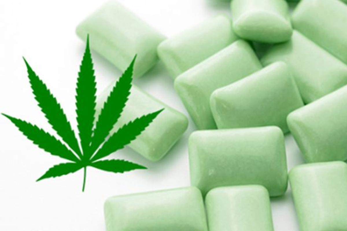 Chewing gum au cannabis pour soulager la fibromyalgie sant nutrition - Comment enlever du chewing gum sur du tissu ...