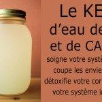 Le kéfir d'eau de coco peut aider à guérir l'intestin, améliorer la fonction immunitaire et prévenir le cancer. Voici comment le préparer!