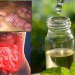 Eliminez toutes les toxines du corps en 3 jours: une méthode qui prévient le cancer, élimine l'excès d'eau et de graisse!